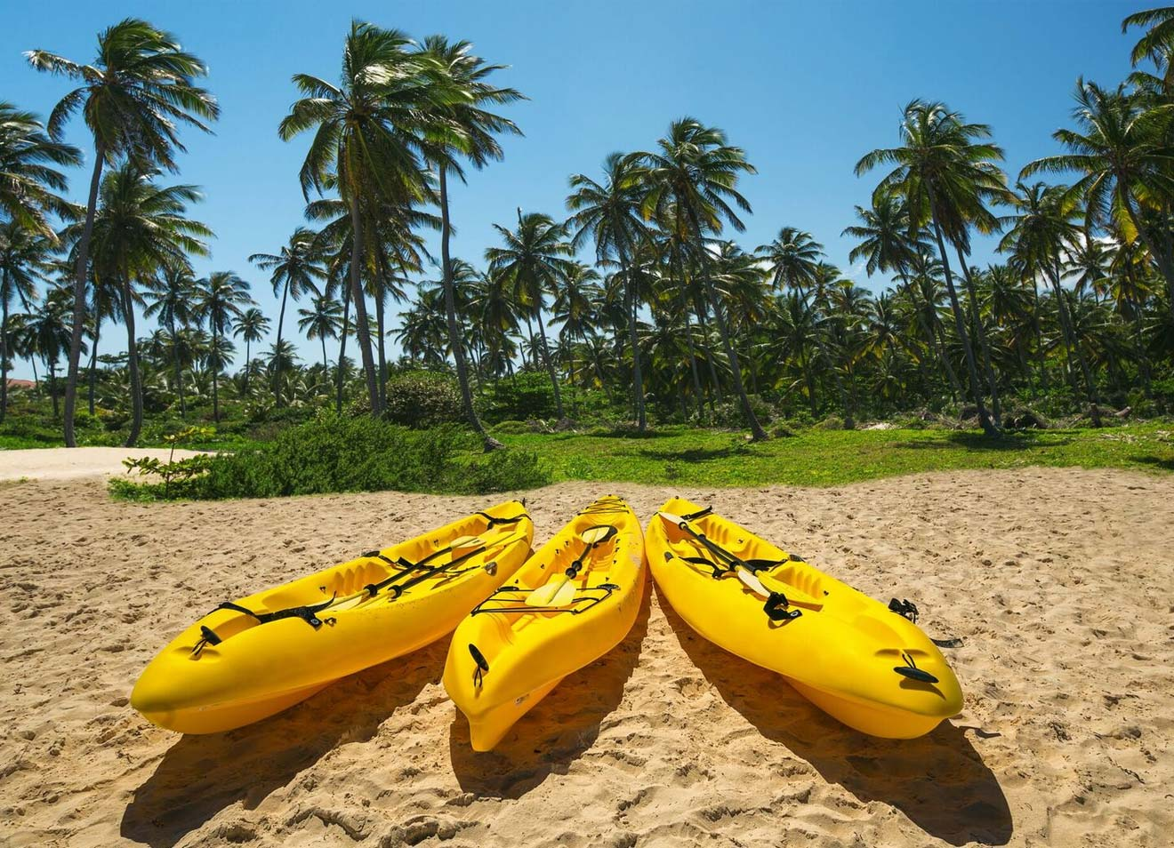 kayaking-kohala-coast