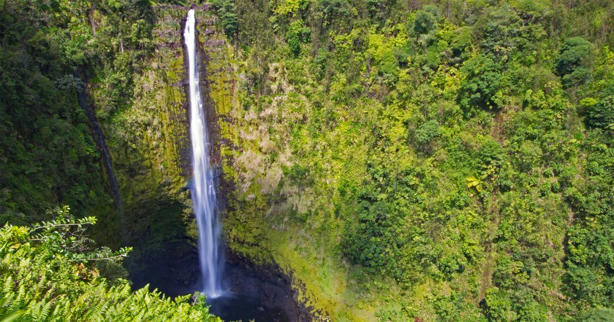 Akaka Falls State Park