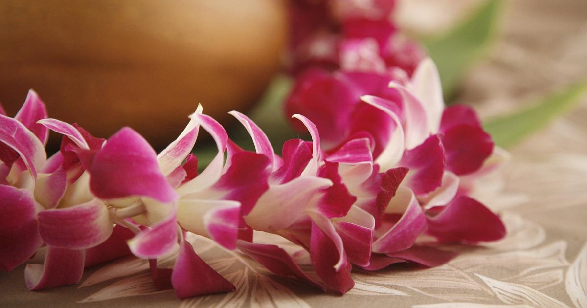 Hawaiian pink orchid flower lei