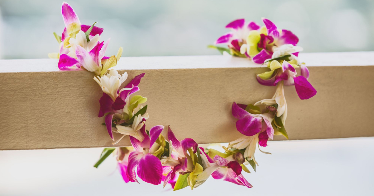 Pink orchid lei